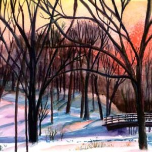 Creek-Woods-