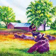 Pasture-Of-Serienty