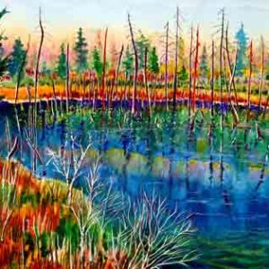 197-Norh-Woods-Pond